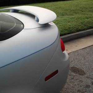 Pinstripe wraps around trunk